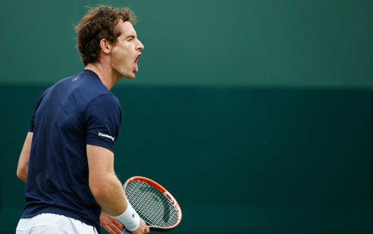 Coupe Davis: la Grande-Bretagne �galise contre la France, gr�ce � Murray